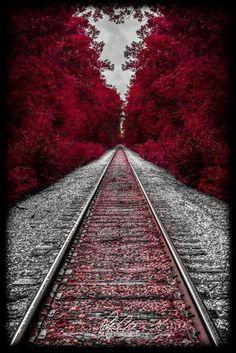 Autumn Train Tracks in New Hampshire Splash Photography, Amazing Photography, Nature Photography, Scenary Photography, Railroad Photography, Trains, Cool Pictures, Cool Photos, Scenery Pictures