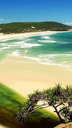 Memories of driving on the beach in - amazing . Fraser Island, Queensland, Australia Australia (largest sand island in the world ~ Heritage Listed)