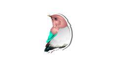 Bird Vector Image  #bird http://www.vectorvice.com/spring-special-vector-pack