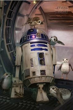 Star Wars The Last Jedi R2-D2 & Porgs Maxi Poster