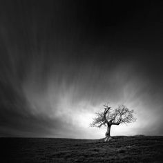 andy lee landscape photography