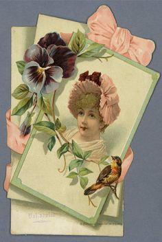 [Tarjetas y prospectos de productos y establecimientos                 comerciales.. Grabado — 1880-1930