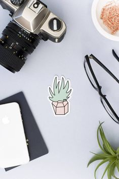 SUCCULENT STICKER (Pink) || Succulent Sticker - Cactus Sticker - Plant Sticker - Plant Lover - Succulent Art - Air Plant - Garden Sticker
