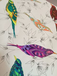 Working on this and needing inspiration... #milliemarotta #colouring #animalkingdom