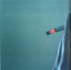 Rinko Kawauchi Series 7 of 8: We Took A Suitcase