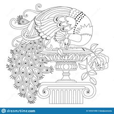 Illustration Of Beautiful Peacock With Rose And Antique Vase. Black And White Page For Kids Coloring Book. Stock Vector - Illustration of fantasy, bird: 169331998 vase vase vase vase vase vase beton painting sketch vase ideas Peacock Painting, Peacock Art, Fabric Painting, Peacock Outline, Peacock Rangoli, Peacock Design, Rangoli Border Designs, Mehndi Art Designs, Kerala Mural Painting