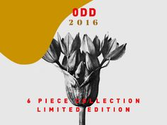 ODD collection. Coming soon. Lucy Bold