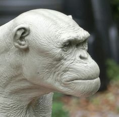 ARIS KOLOKONTES Character Art, Character Design, Traditional Sculptures, Technical Illustration, Statues, Planet Of The Apes, Chimpanzee, 3d Models, Sculpture Clay