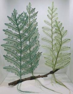 sheer plant no.1  needlework art Ⓒ Nagako Ono HAPPa_Ya #art #plants