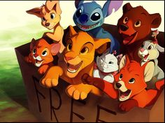"""This is so cute! I'm Simba (the song in the beginning of The Lion King means """"this is a lion. Here is a lion"""")"""
