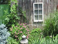 via Empress of Dirt - old window hung on fence - via Remodelaholic