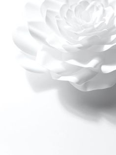 ◖ pin: whitechairs ◗