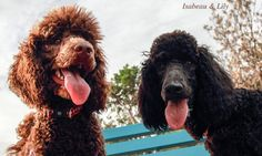 """Isabeau & Lily - """"Best Friends Forever!"""""""