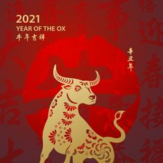 Chinese New Year Images, Chinese New Year Design, Happy Chinese New Year, Korean New Year, New Year Illustration, Illustrations, Year Of The Rabbit, Year Of The Snake, Thing 1