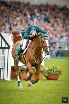 Photos From the Discover Ireland Royal Dublin Horse Show, Part Two. . . | Noelle Floyd