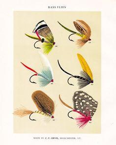 [CasaGiardino] ♡ C F Orvis Fly Fishing print with flies for bass Bass Fishing Tips, Sea Fishing, Fishing Lures, Trout Fishing, Saltwater Fishing, Fishing Reels, Fishing Tackle, Fishing Boats, Fish Illustration
