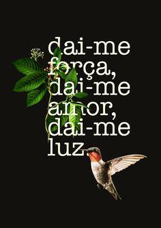 Santo Daime @ Flor de Jagube by @filipevieirawho
