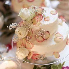 A Delicious Gooseberry & Elderflower sponge cake yum!!! Nice one @georgiepuddingnpie  UK v Italia in the good fight cake off #jamie - @jamieoliver- #webstagram