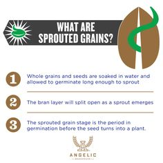 We live and breathe #sproutedgrains. We believe in them. But really, what are they? We can help with that. #ancientgrains #healthyeating