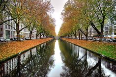 Dusseldorf, Germany - I've always wanted to visit where my Great Grandparents were born.