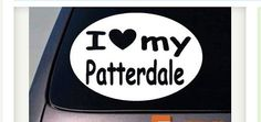 I love my patterdale