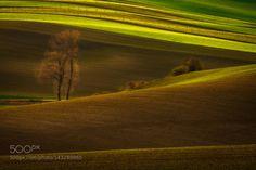 Moravian Fields by PawelUchorczak