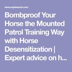 Bombproof Your Horse the Mounted Patrol Training Way with Horse Desensitization | Expert advice on horse care and horse riding
