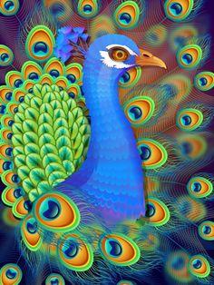 Create a Vibrant Peacock in Adobe Illustrator - Tuts+ Design & Illustration Tutorial