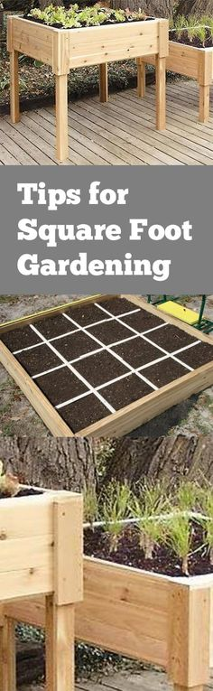 Tips for Square Foot Gardening. Great ideas for square foot gardening in your yard or landscape