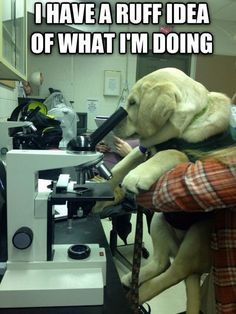 """Consulting the """"lab"""""""