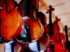 Luthier CJK classic and electric violins
