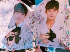 Meanie poster for carat land.  Someone kicks me to korea right now please.  #meanie #wonwoo #mingyu #jeonwonwoo #kimmingyu