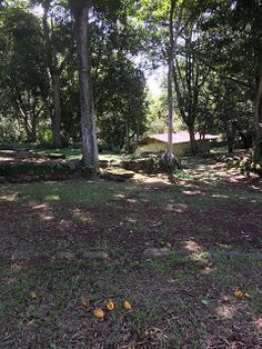 MPaniagua bienes raices: 0100099 Lote, Turrucares, La Garita, Alajuela, Cos...