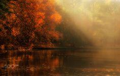 Sunset lights - SONY DSC