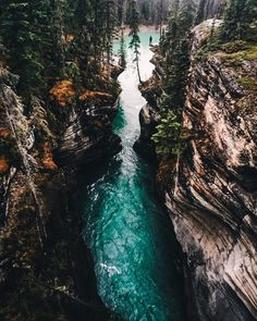 Adventure photographer @jontaylorsweet kicks off our week with an absolutely incredible shot of a stunning scene of a river cutting through an old forest near  Banff Canada. Jonathan's story (link in bio) and now featured on @stellerstorie is a testament to the incredible scenes in Northwest Canada. by stellerstories