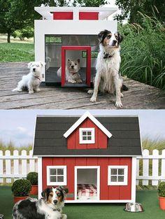 Unique Dog Houses | Tags: bizarre , dog house , dog house design , pet gadget Read More