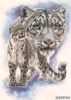 [Visit to Buy] DIY Diamond Painting White Leopard Embroidery Diamond Painting Cross Stitch Leopard Animal Rhinestone Mosaic Painting Leopard Cub, Leopard Animal, Snow Leopard, White Leopard, Big Cats Art, Cat Art, Hamsters, Exotic Cats, Tiger Art