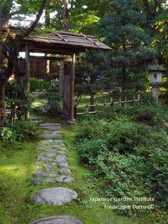 voyage d'études au Japon niwaki et jardins japonais frederique dumas www.japanese-garden-institute.com www.frederique-dumas.com
