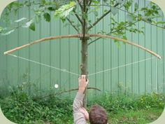 Learn bow making instructions on how to make a quickie survival bow from a sapling Homestead Survival, Wilderness Survival, Camping Survival, Outdoor Survival, Survival Bow, Survival Tools, Survival Prepping, Apocalypse Survival, Doomsday Survival