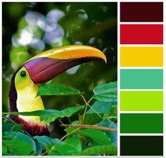 Fresh tropical colour palette