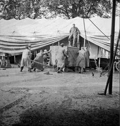 Circus collection: Cirque Knie 1938