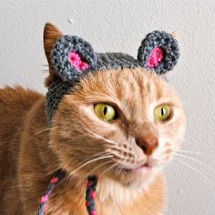 Mouse Costume for Cats Hand Knit Cat Hat Cat by bitchknits