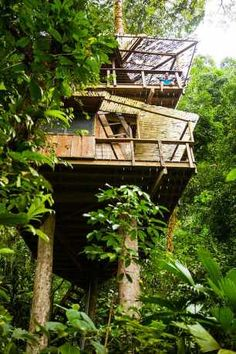 Future Home On Pinterest Treehouse Costa Rica And