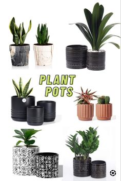 These modern pots for indoor plants will take your home decor style to the next level! #indoorplantsdecor #indoorplantsideas #plantsmakepeoplehappy #plantstands