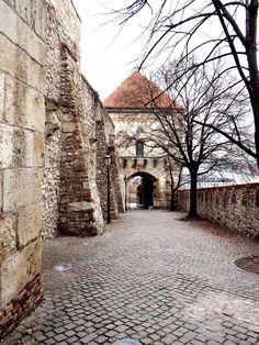 Bratislava – My New Favourite City In Eastern Europe Viking River, Bratislava Slovakia, Eastern Europe, Vikings, Cruise, Sweet Home, City, Beautiful, Travel Tips