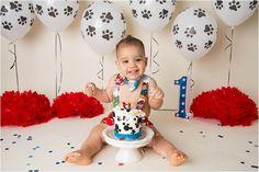 Paw Patrol Cake Smash photography , Puppy Cake smash,. Shannon Lee Photography » Phoenix Area Maternity, Newborn, Child & Family Photographer