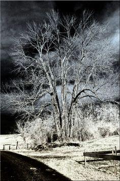 'Nachts (1)' von Rudolf Büttner bei artflakes.com als Poster oder Kunstdruck $18.02