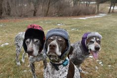 GSPs in hats