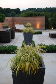 Contemporary Garden - www.thelandscapedesignstudio.co.uk