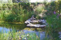 Schaugärten in Österreich - #gartentulln #tulln #niederösterreich #askEnrico Nature, Lawn And Garden